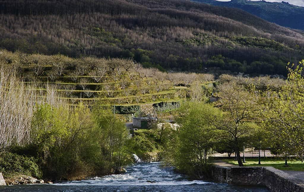 El Valle del Jerte es uno de los destinos para hacer turismo rural en primavera más recomendados.