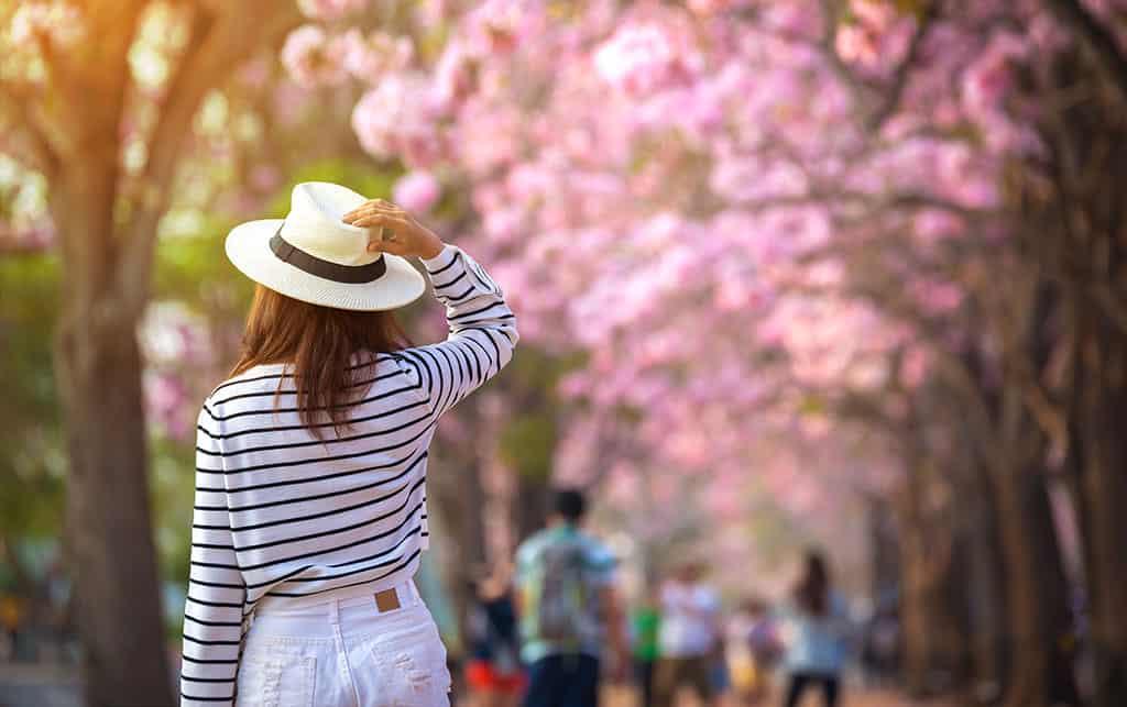 Top-5 de mejores destinos para hacer turismo rural en primavera