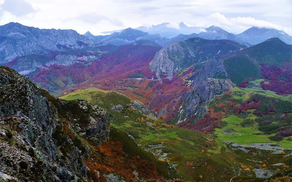 Parque Natural de Redes en Asturias